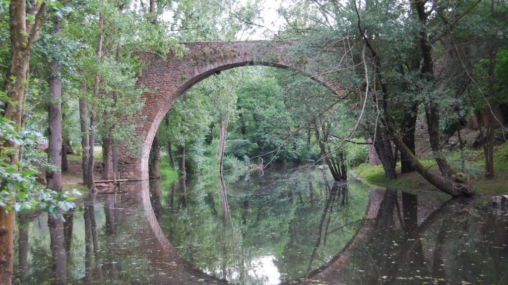 Títol: circumferència d'aigua dolça Autor: Maria Coma Pérez Categoria: 1r Cicle ESO Any: 2013 (accèssit) Centre: INS Miquel Martí i Pol (Roda de Ter)