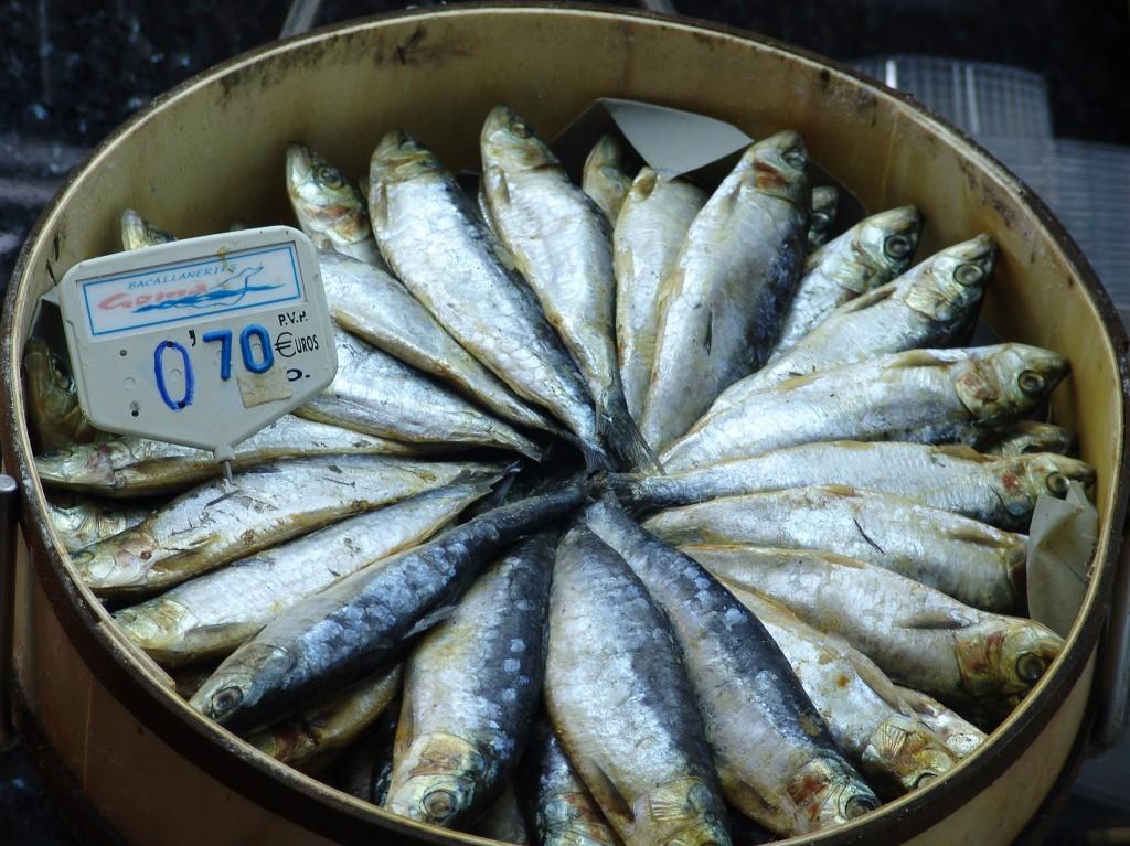 Títol: π per peix al quadrat Autor: Mario Font Categoria: 1r cicle ESO Any: 2011 (1r premi) Centre: Aula Escola Europea