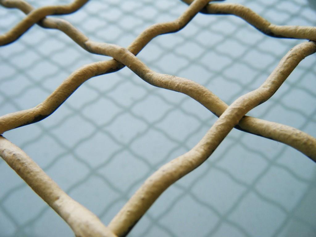 Títol: La mar quadriculada Autor: Max Valls Plata Categoria: 1r Cicle ESO Any: 2010 (accèssit) Centre: Escola Voramar