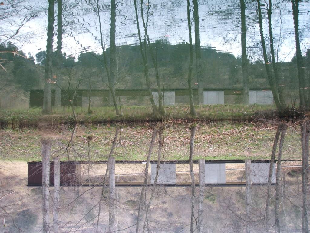 Títol: Simetria (amb escriptura invertida) Autor: Anisa Barrabah Categoria: 1r Cicle ESO (accèssit) Any: 2006 Centre: IES Bosc de la Coma