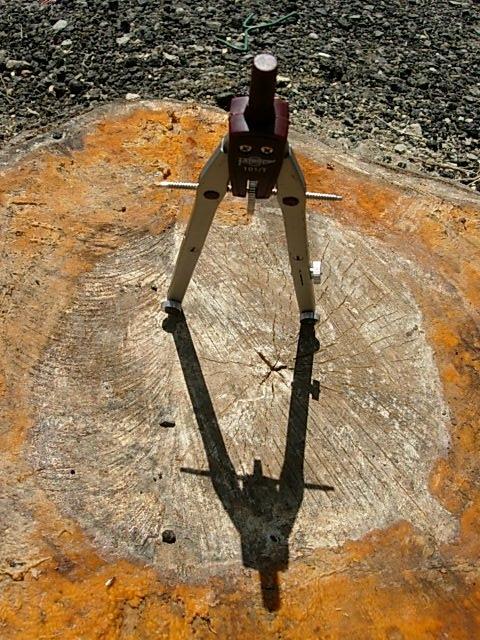 Títol: Buscant el nombre π Autor: Elisabet Caballero Categoria: 2n Cicle ESO (accèssit) Any: 2006 Centre: IEs Montsacopa