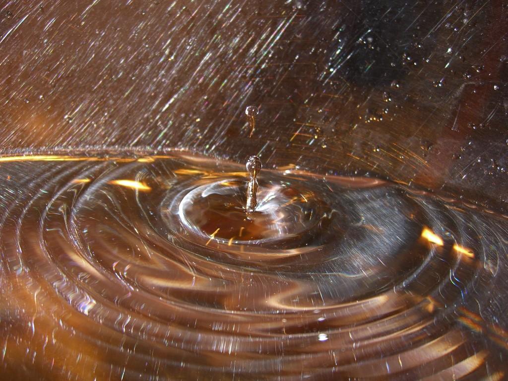 Títol: Anells concèntrics congelats en el temps Autor: Borja Palacios Serrano Categoria: Professorat (1r premi) Any: 2006 Centre: Jesús-Maria Sant Andreu