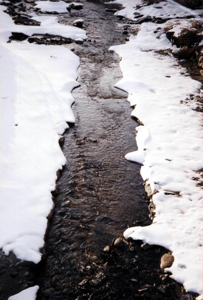 Títol: Paral·leles trencades pel fred Autor: Categoria: Batxillerat i ESPO (accèssit) Any: 2004 Centre: IES Joan Boscà