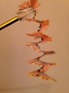 El llapis d'Arquimedes