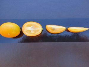 Fraccions de taronges xineses