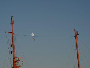 Lluna tangent