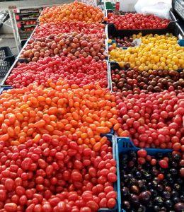 Venn Diagrams of Tomatoes
